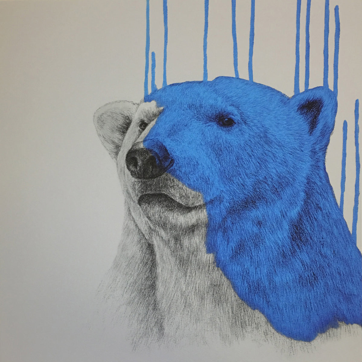 Hey There, Polar Bear (Cool Blue).