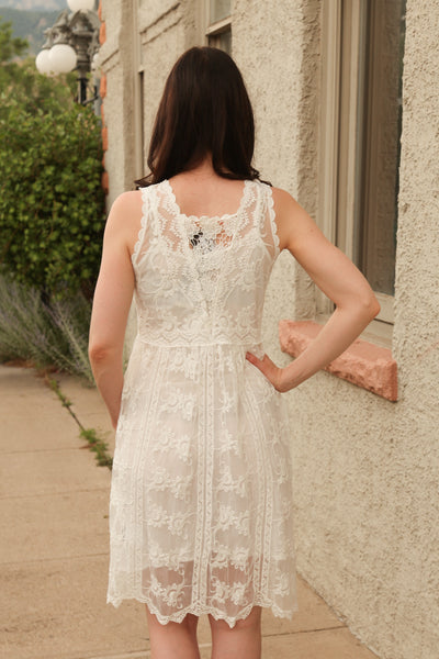 Wendy Mesh Lace Overlay Dress