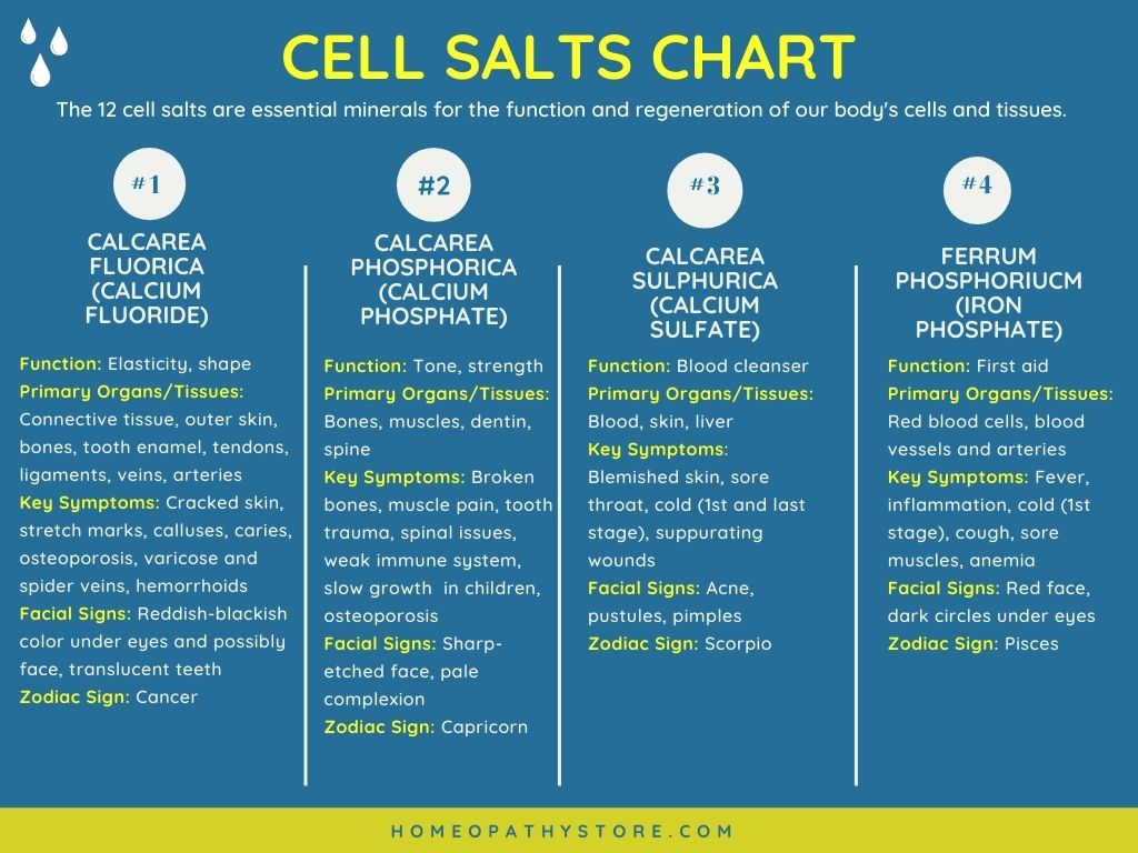Cell Salts Chart - Homeopathy Store