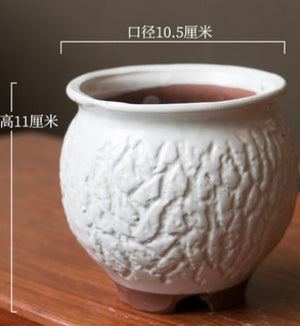 Fleshy Permeable Ceramic  Flower Pot