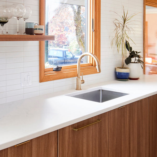 Appliance Panels for your kitchen?
