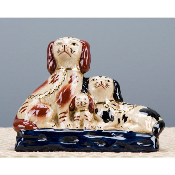 Staffordshire King Charles Spaniel Family Dog