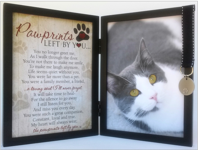 Frame ~ Pawprints Left By You