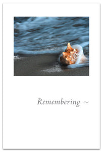 "Cards-Condolence ""Remembering"""