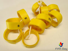 FC10X_Yellow_wm_RAHCMR7I98NJ.jpg
