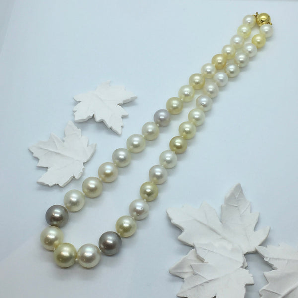 Multi-coloured Gold, Grey and White South Sea Graduated Pearl strand