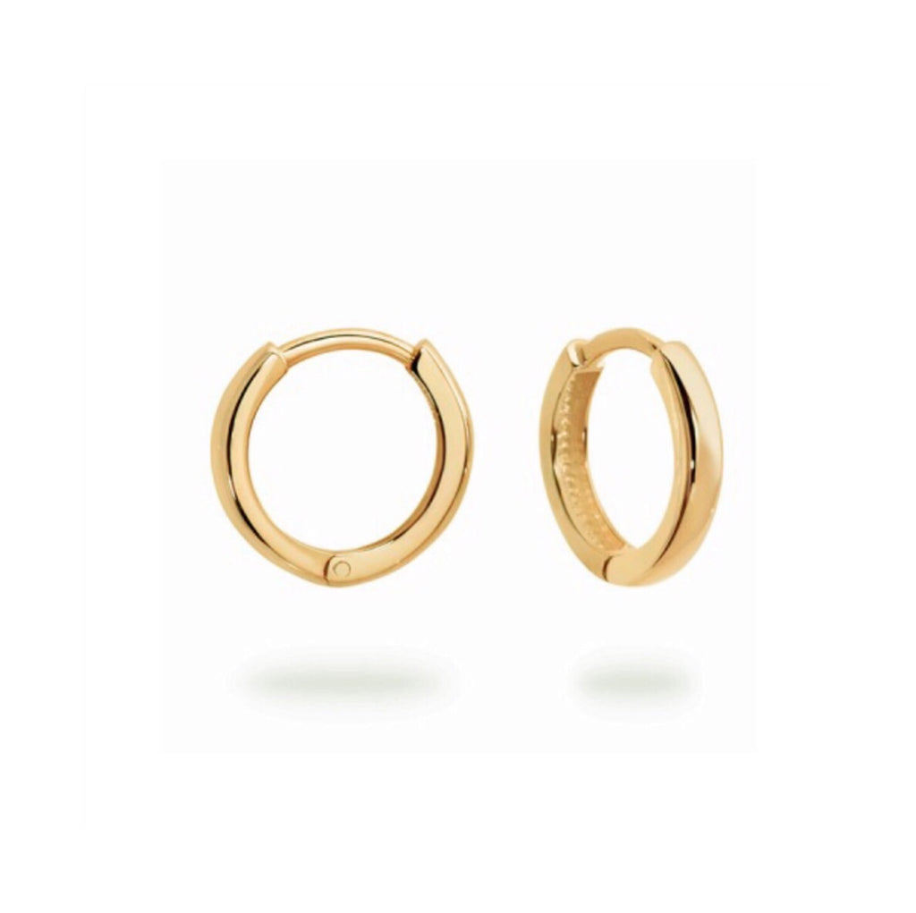 Small Yellow Gold hinged Huggie Hoops