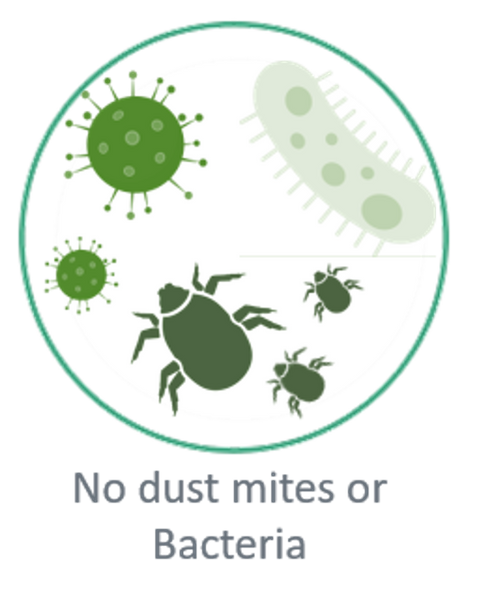 The importance of the Nettress in preventing dust mite exposure