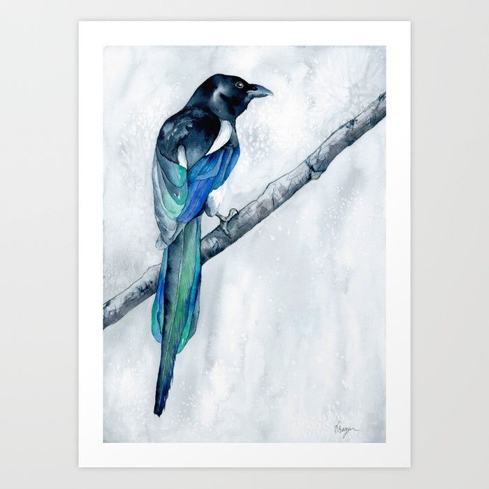 Watercolor Painting - The Collector - Magpie Wildlife Art Print