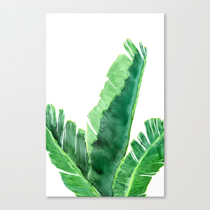 Banana Tree Tropical Plant Watercolor Painting - Botanical Nature Art Print