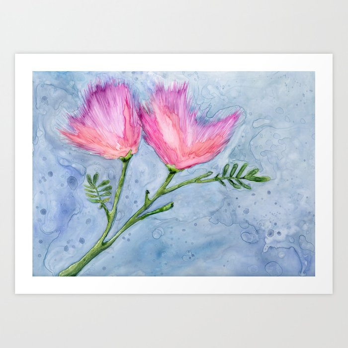 Albizia Silk Floral Watercolor Painting - Pink Mimosa Persian Tree Art Print