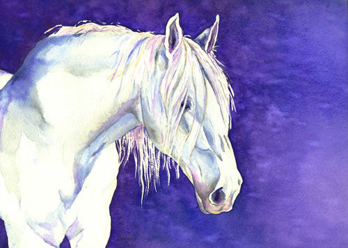 Equine Watercolor Painting - White Horse Nature - Fine Art Print - Brazen Design Studio