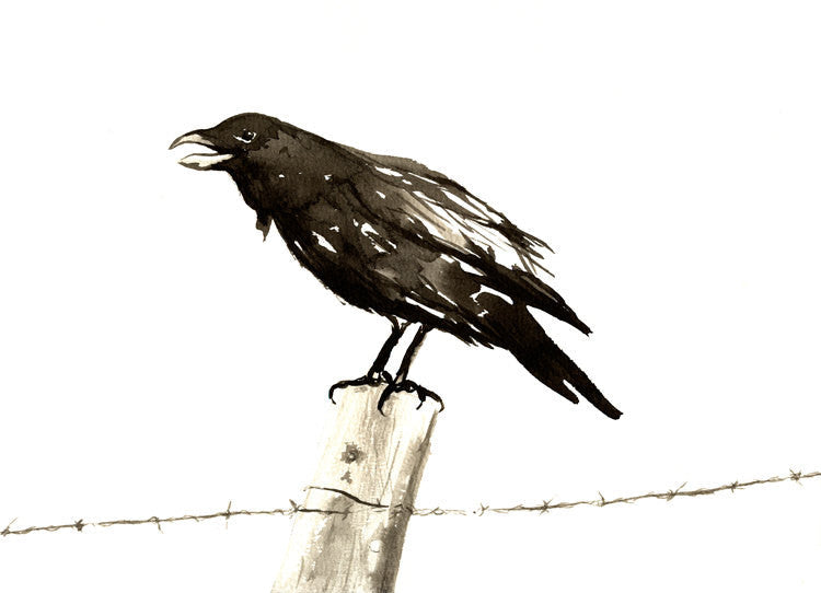 Japanese Ink Painting - Raven on a Barbed Wire Fence - Black Bird Sumi-e Art Print - Brazen Design Studio