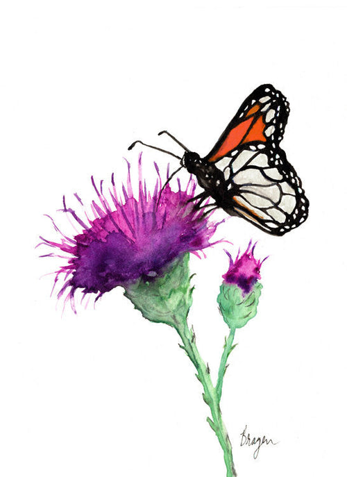 Watercolor Painting - Monarch and Milk Thistle - Floral Nature Art Print - Brazen Design Studio