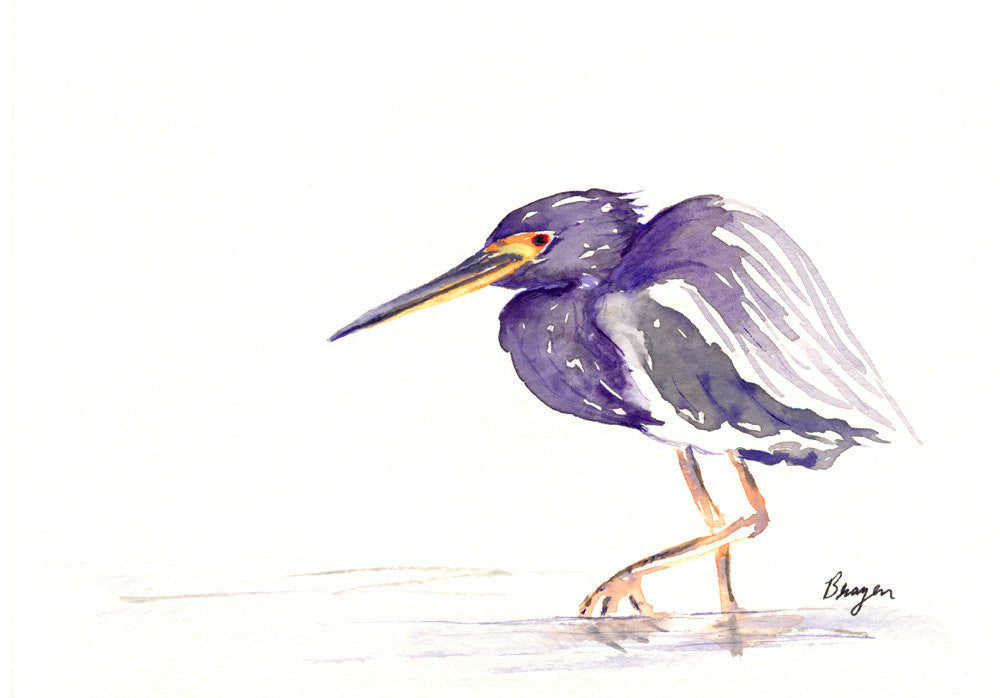 Greeting Card - TriColoured Heron Bird Art Card - Brazen Design Studio