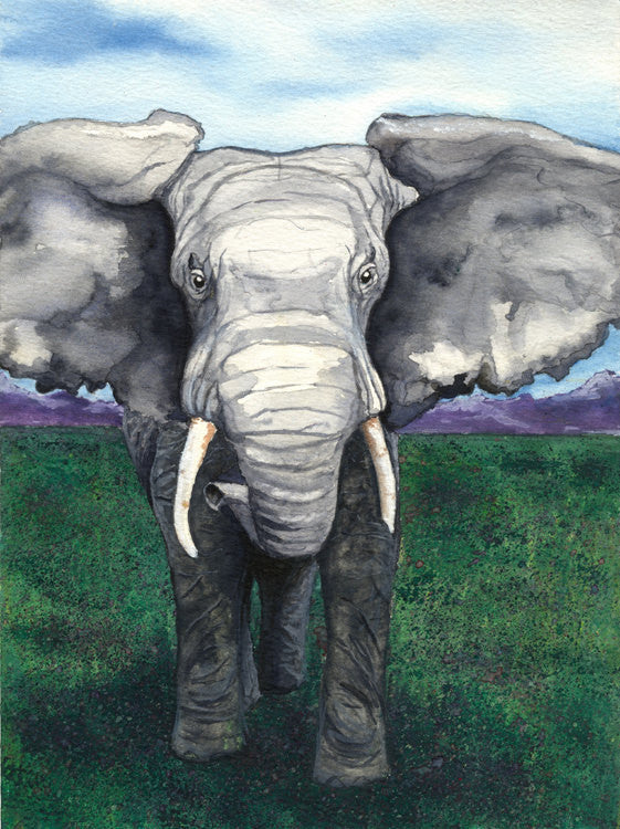 Elephant African Wildlife Watercolour Art Card - Brazen Design Studio