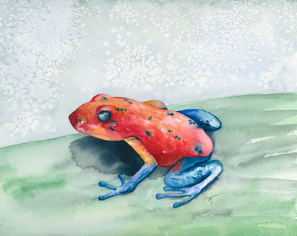 Watercolor Painting - Blue Jean Poison Dart Frog - Art Print - Brazen Design Studio
