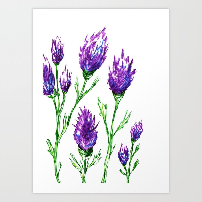 Clover Floral Watercolor Painting - Botanical Art Print