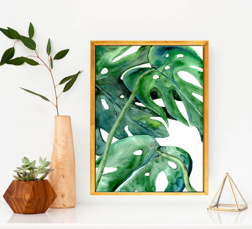Monstera Philodendron Watercolor Painting - Botanical Nature Art Print