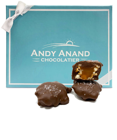 Andy Anand Milk Chocolate Pretzel Caramel Clusters
