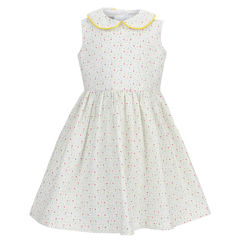 Ellie Dress, Jumby Sprinkle