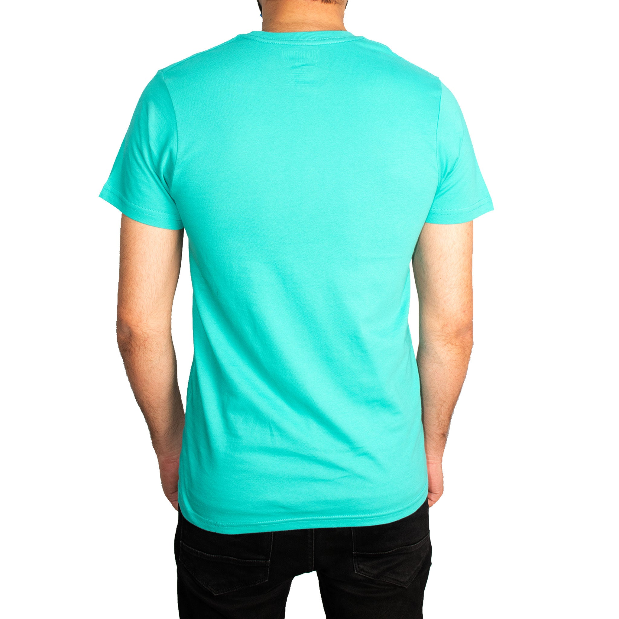 MEN'S S/S GRAPHIC TEE - JADE - Export Mall
