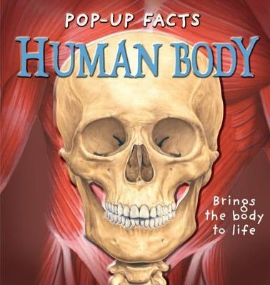 Pop-Up Facts : Human Body