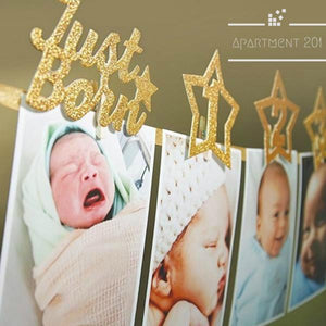 12 Months Baby Photo Banner - Apartment 201