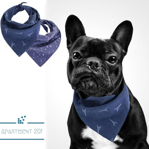 Doggie Bandana - Apartment 201