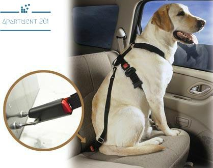 Chill Dog Car Seat Belt - Apartment 201