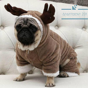 Cutie Reindeer Costume - Apartment 201