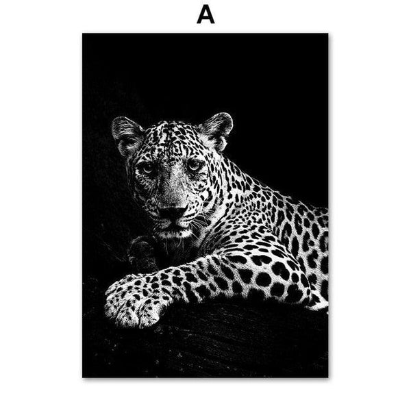 B&W Beautiful Animals Canvas Wall Art - Apartment 201