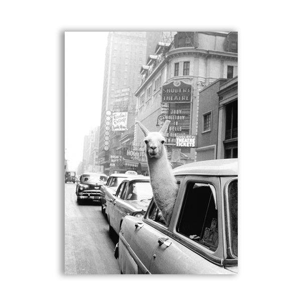 Vintage Llama Taxi Ride Canvas Wall Art - Apartment 201