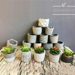 Mini Cube Succulent Plant Pots - Apartment 201