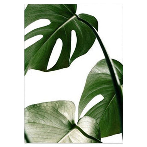 Lush Tropical Plants Canvas Wall Art - Apartment 201