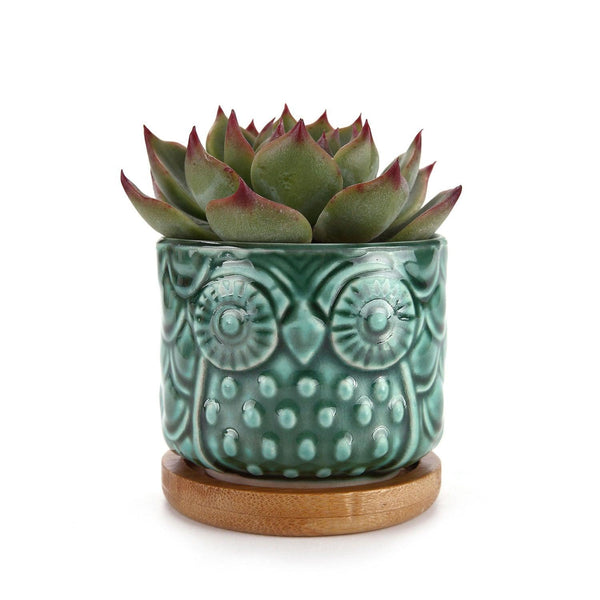 Americana Owl Planter - Apartment 201