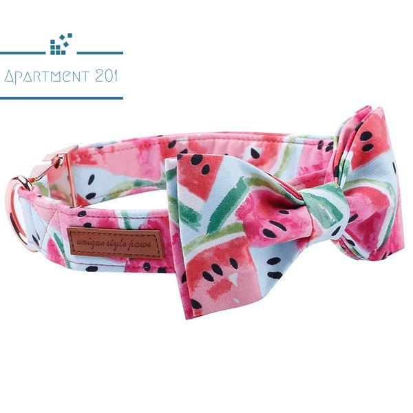 Watermelon Cool Bowtie Collar and Leash - Apartment 201