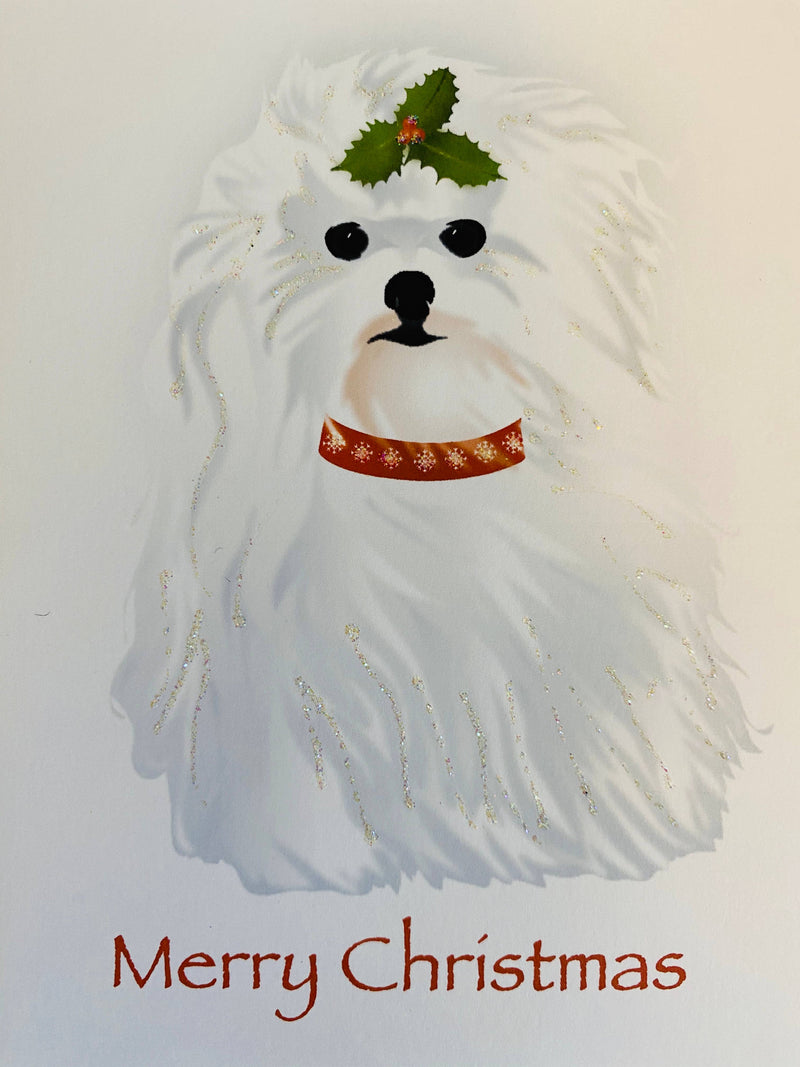 Christmas Maltese Dog, Holiday Card