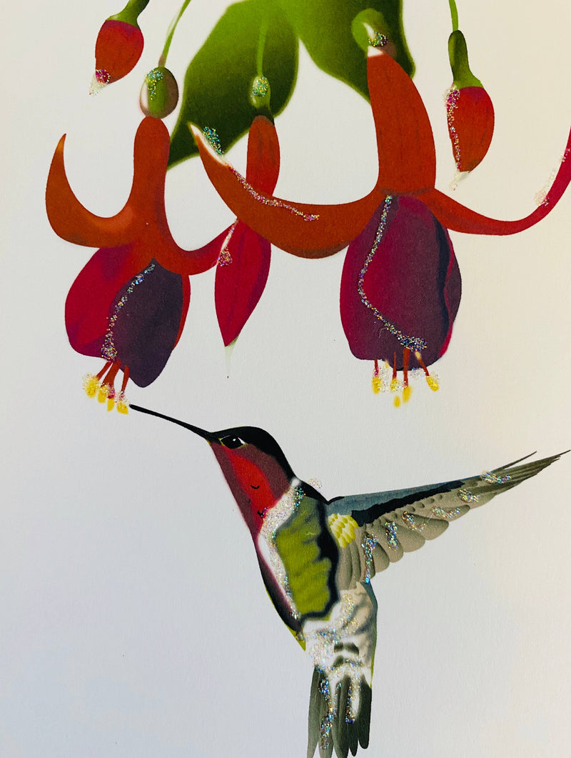 Fuchsia and Humming Bird , Everyday Card