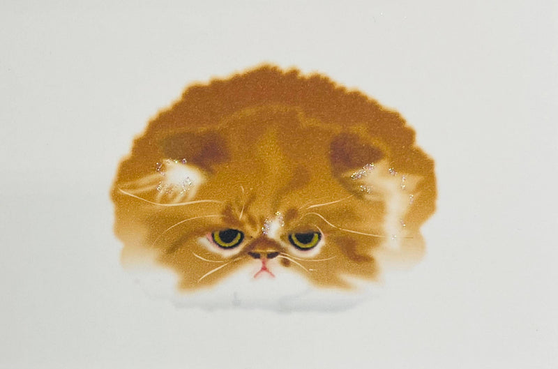 Pouting Persian Cat - Gift Enclosure Cards