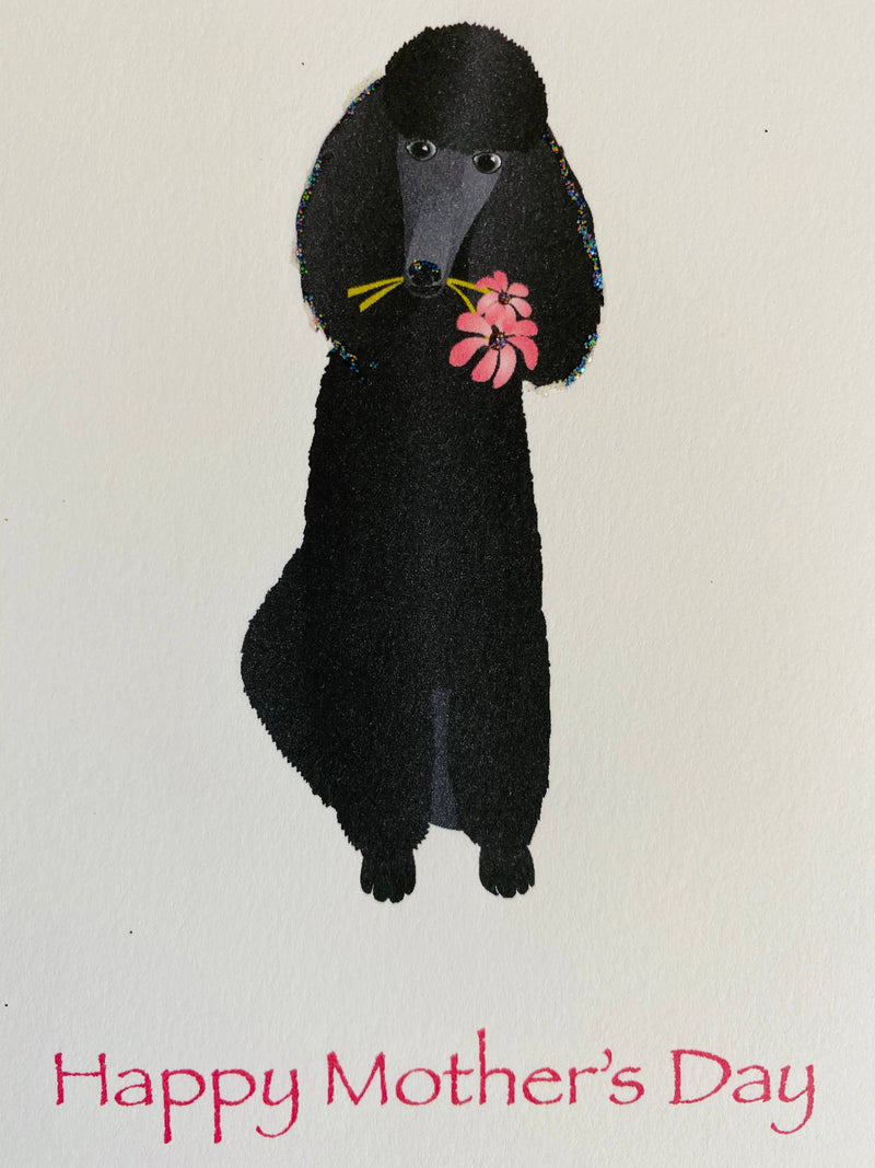 Black Sitting Poodle with Flowers