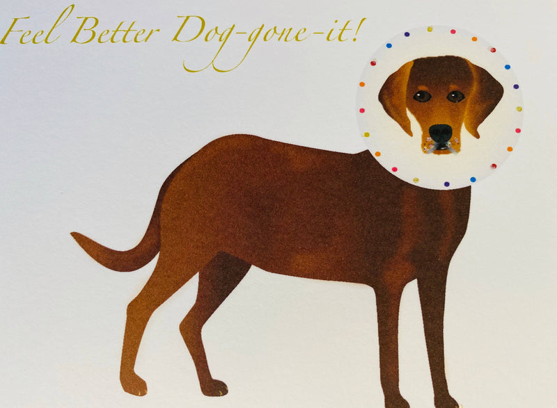 Lab with Collar Dog Get Well Card