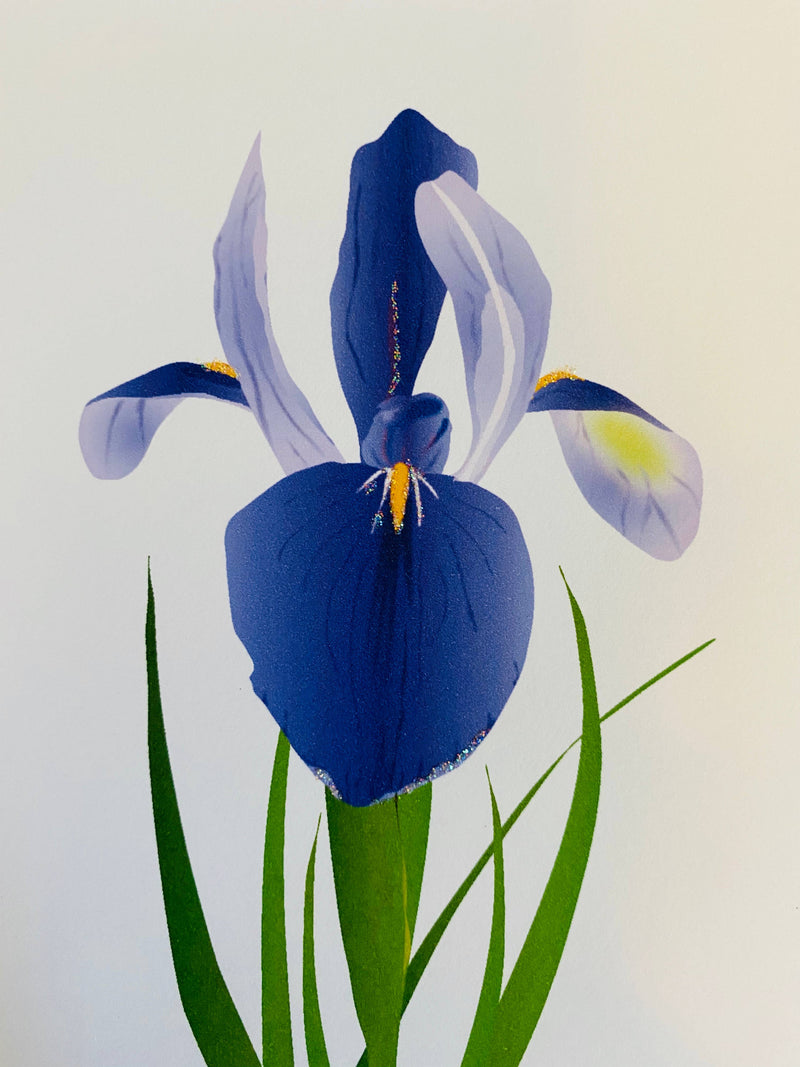Iris Flower, Everyday Card