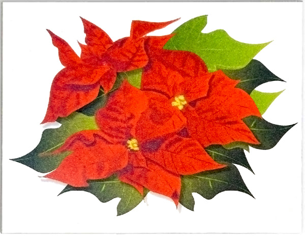 Poinsettia Holiday and Christmas Cards