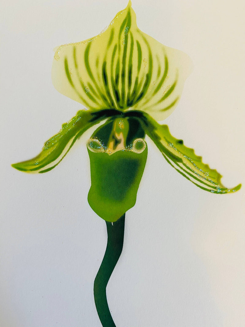 Green Lady Slipper Flower, Everyday Card