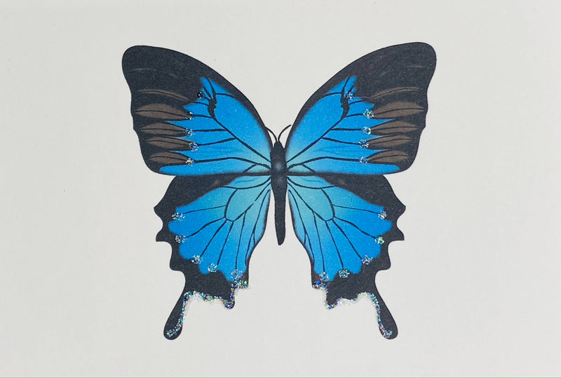 Blue Butterfly - Gift Enclosure Cards
