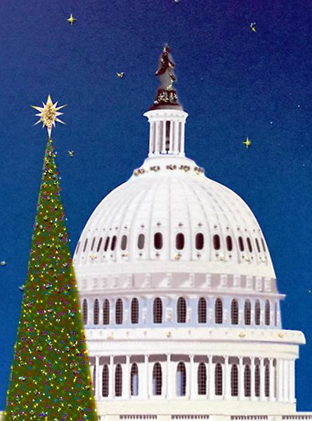 National Christmas Tree - Capital Building - Washington D.C.