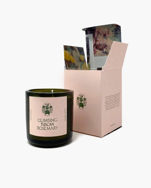 Flamingo Estate Climbing Tuscan Rosemary Candle