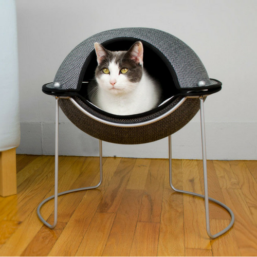 Luxurious Beds for Your Dog or Cat This Winter