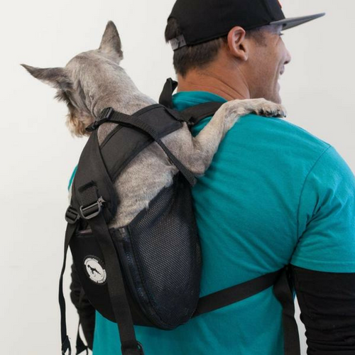 7f0a37c02e New In Store! Ruffit Dog Carrier – Peticular